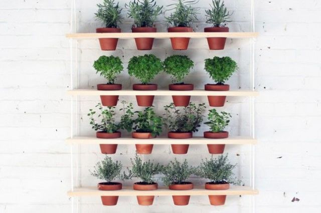 gallery-1430166859-potted-hanging-garden house beautiful